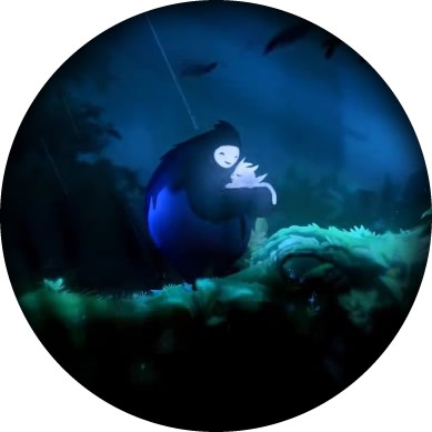Ori and the Blind Forest Naru
