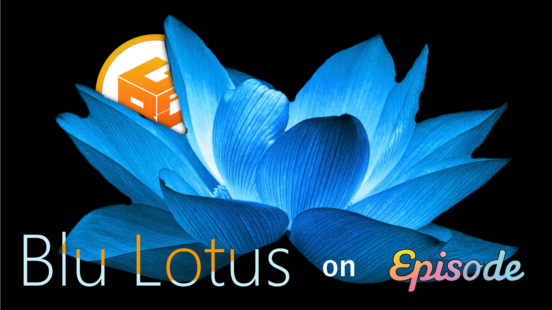 Blu Lotus on Episode